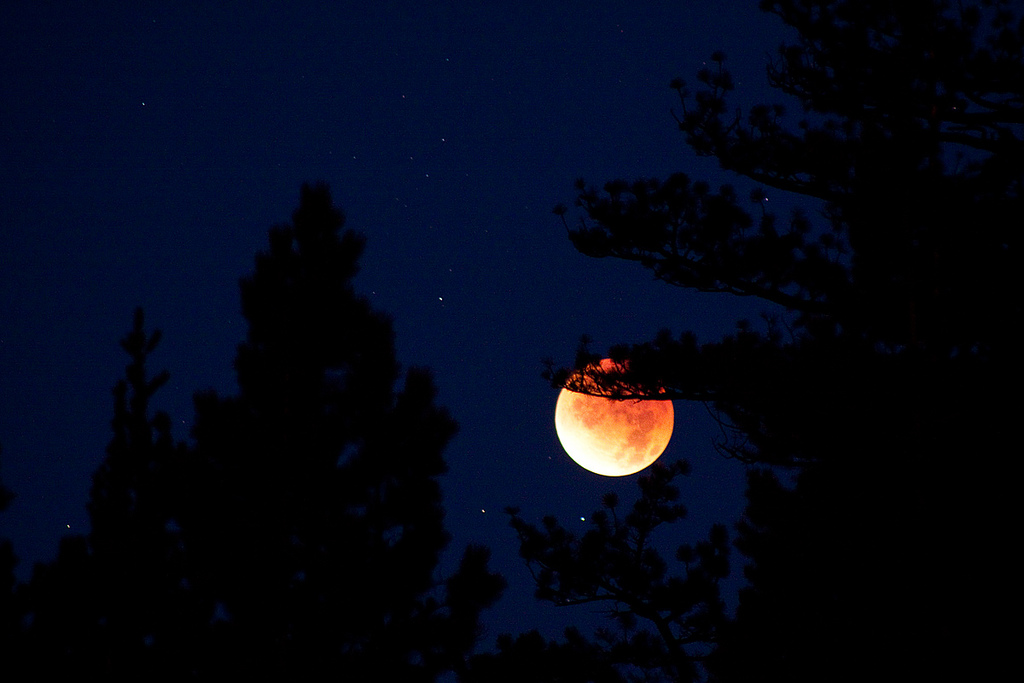Lunar Eclipse, Truckee California